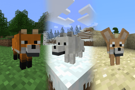 Different types of Foxes in Minecraft