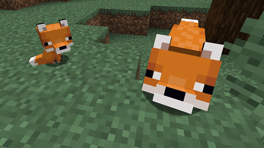 minecraft how to tame fox